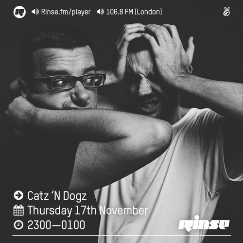 download → Catz 'N Dogz - Rinse FM Podcast - 17-Nov-2016