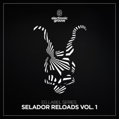 download → Dave Seaman & Steve Parry - Electronic Groove Label Series (Selador Reloads Vol. 1) - 19-Feb-2021