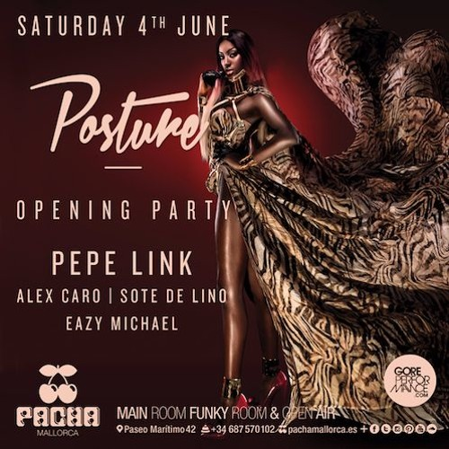download → Pepe Link - live at Posture (Pacha, Mallorca) - 04-Jun-2016