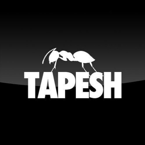 download → Tapesh - live at ANTS (Ushuaia, Ibiza) - 13-May-2017