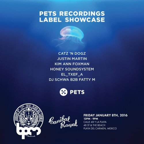 download → Kim Ann Foxman - live at Pets Recordings, Canibal Royal (The BPM 2016, Mexico) - 08-Jan-2015